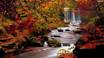 autumn-forest-waterfall-wallpaper