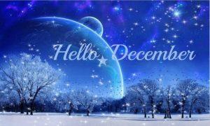 december75911_391785857566862_1372423544_n_large