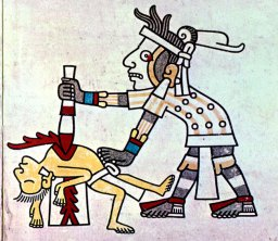 Image from Mayan Codex, taken from textbook.